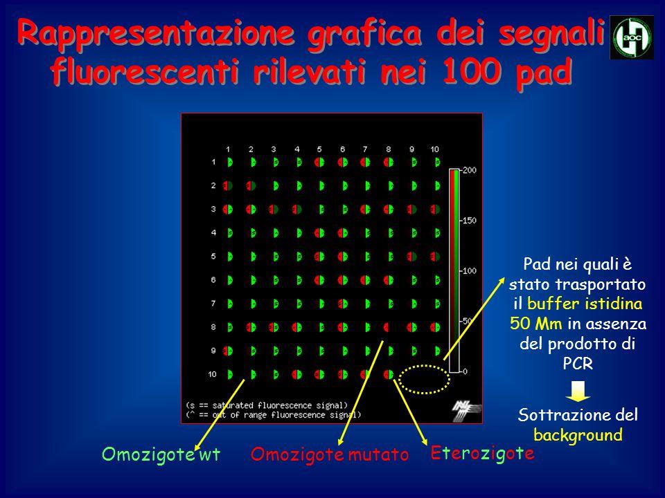Rappresentazione grafica dei segnali fluorescenti rilevati nei 100 pad