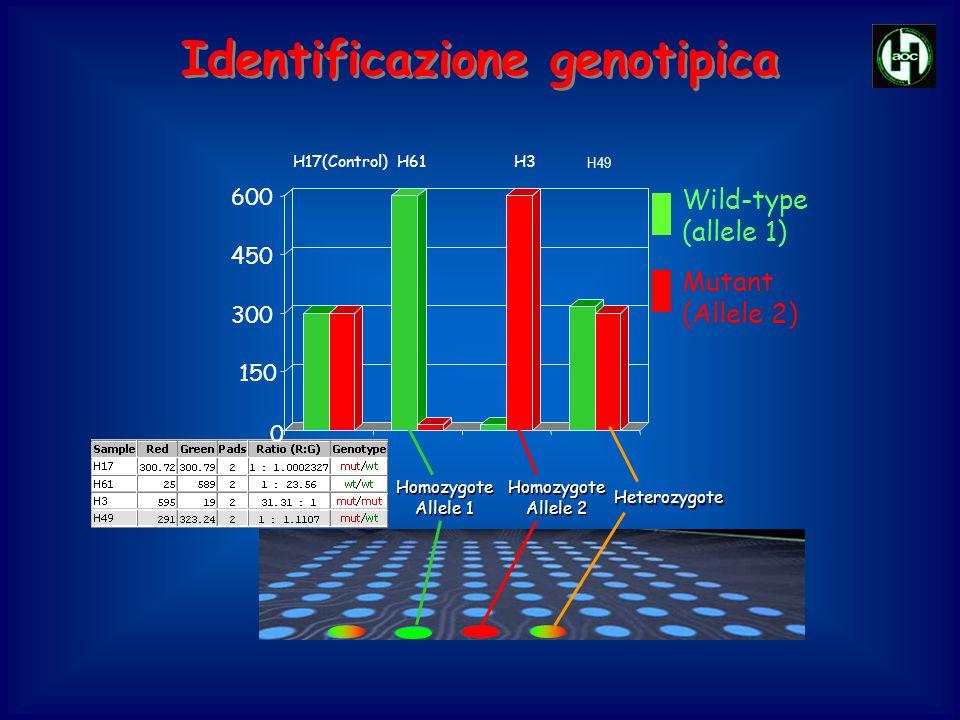 Identificazione genotipica
