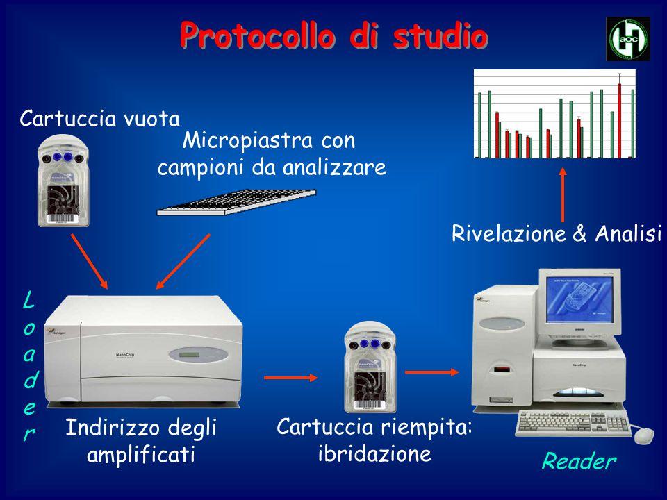 Protocollo di studio Cartuccia vuota Micropiastra con