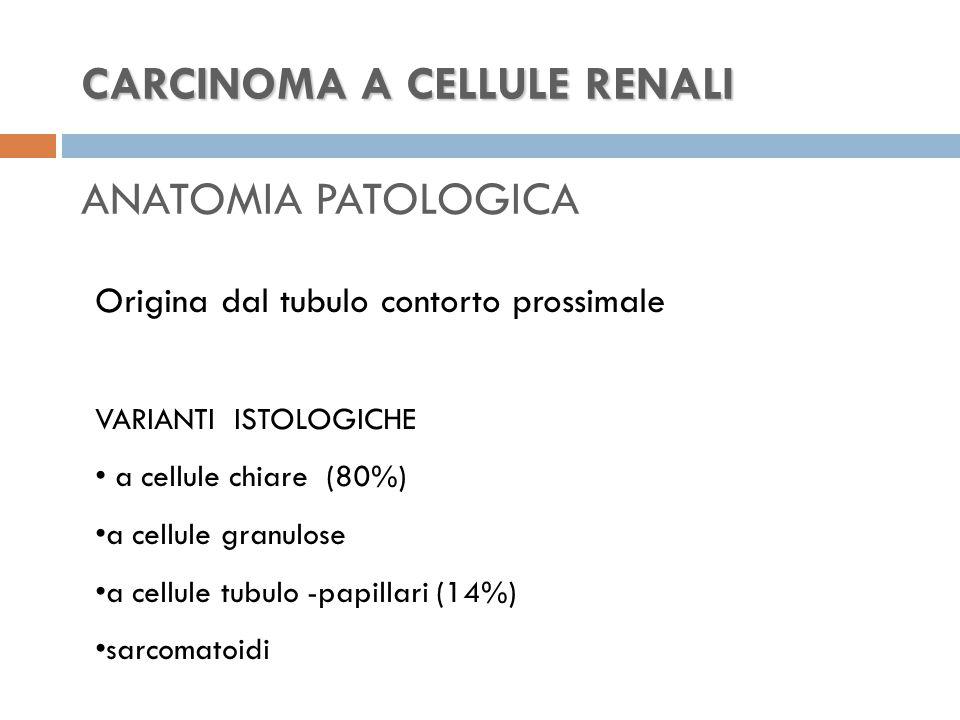 CARCINOMA A CELLULE RENALI ANATOMIA PATOLOGICA