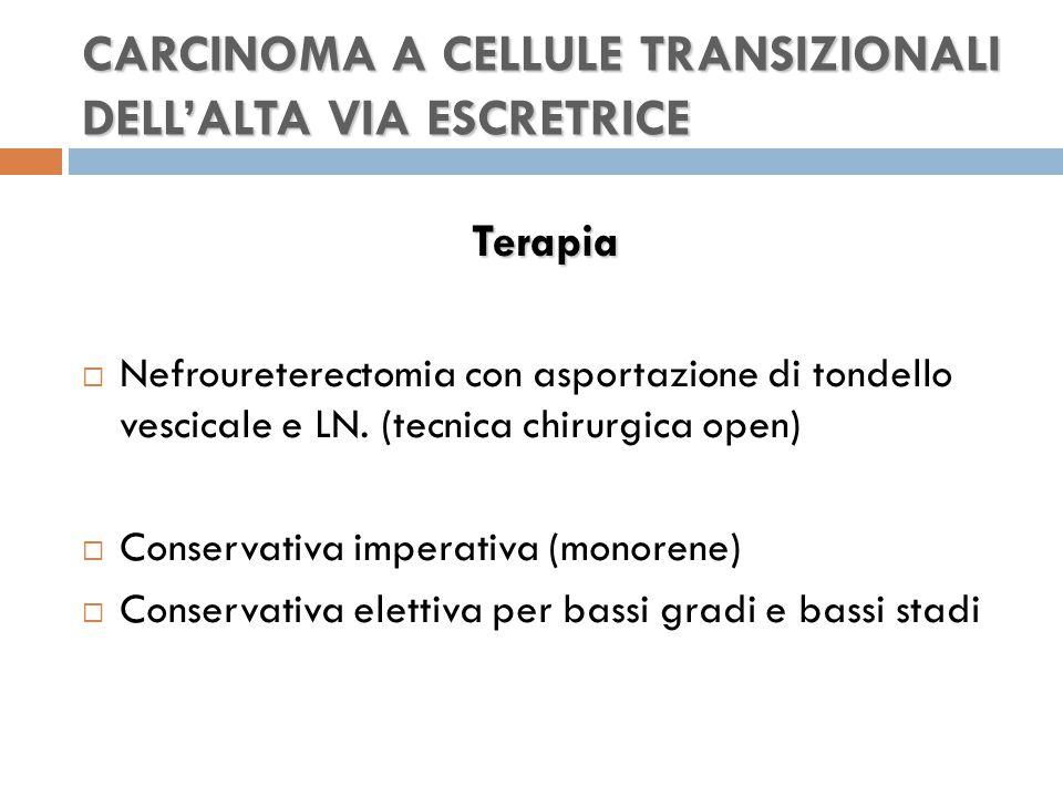 CARCINOMA A CELLULE TRANSIZIONALI DELL'ALTA VIA ESCRETRICE