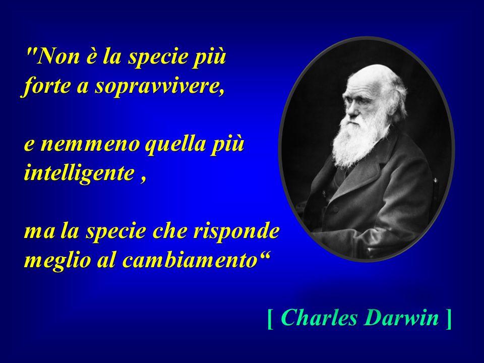 Non è la specie più forte a sopravvivere, e nemmeno quella più. intelligente , ma la specie che risponde.