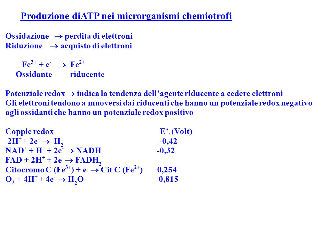 Produzione diATP nei microrganismi chemiotrofi