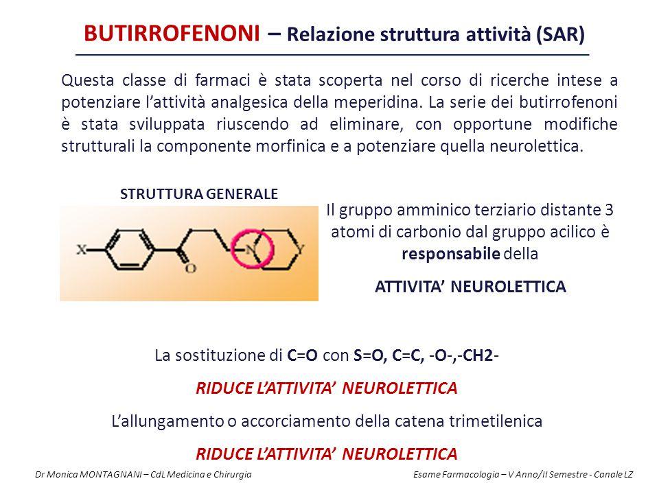 BUTIRROFENONI – Relazione struttura attività (SAR)