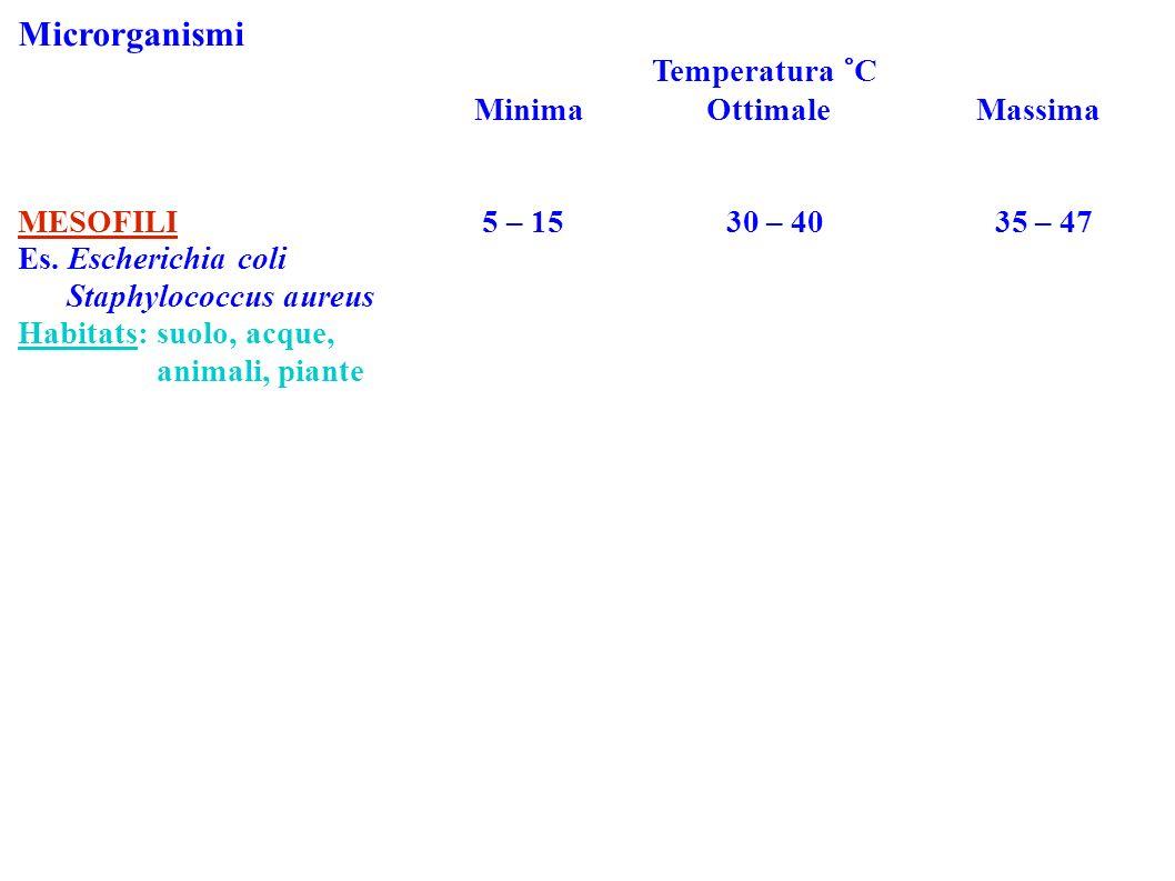 Microrganismi Temperatura °C Minima Ottimale Massima