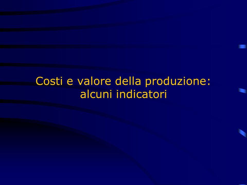 Costi e valore della produzione: alcuni indicatori