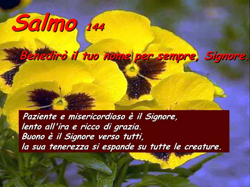 Salmo 144 Benedirò il tuo nome per sempre, Signore.
