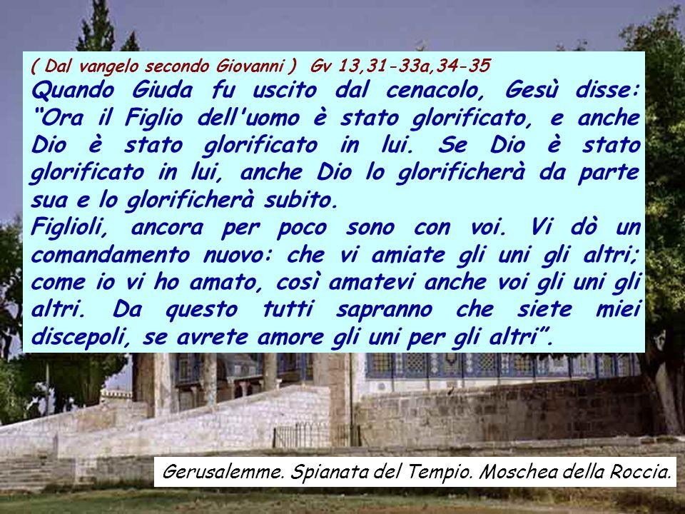 ( Dal vangelo secondo Giovanni ) Gv 13,31-33a,34-35