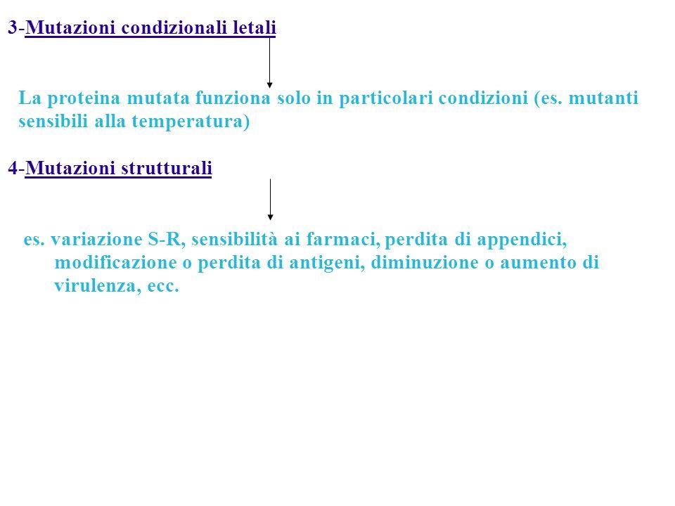 3-Mutazioni condizionali letali