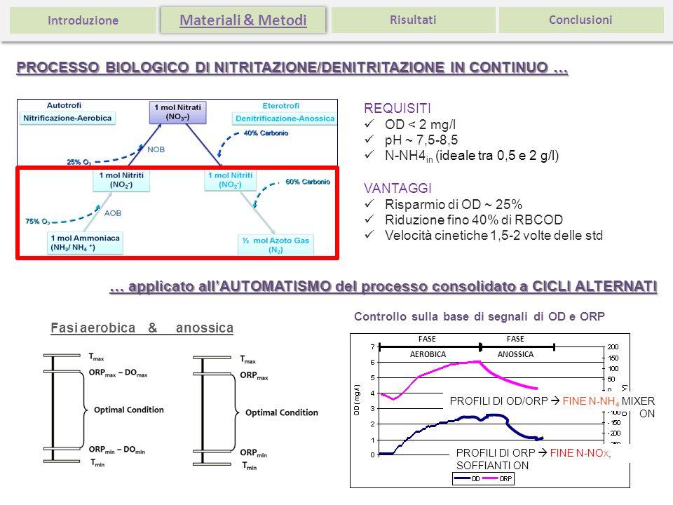 Introduzione Materiali & Metodi. Risultati. Conclusioni. PROCESSO BIOLOGICO DI NITRITAZIONE/DENITRITAZIONE IN CONTINUO …