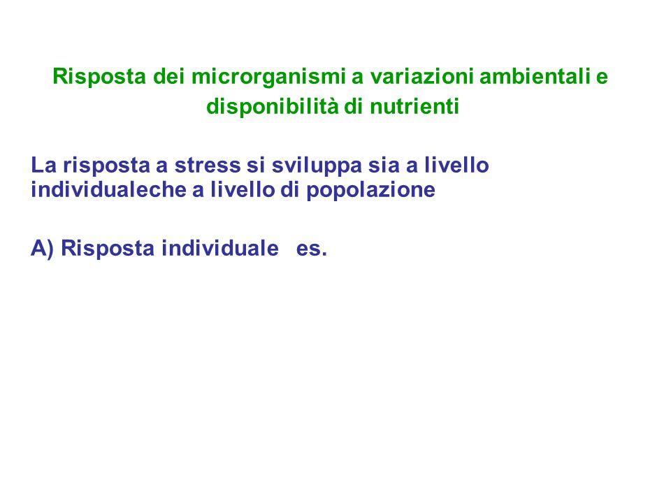 Risposta dei microrganismi a variazioni ambientali e