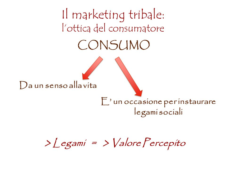 Il marketing tribale: l'ottica del consumatore