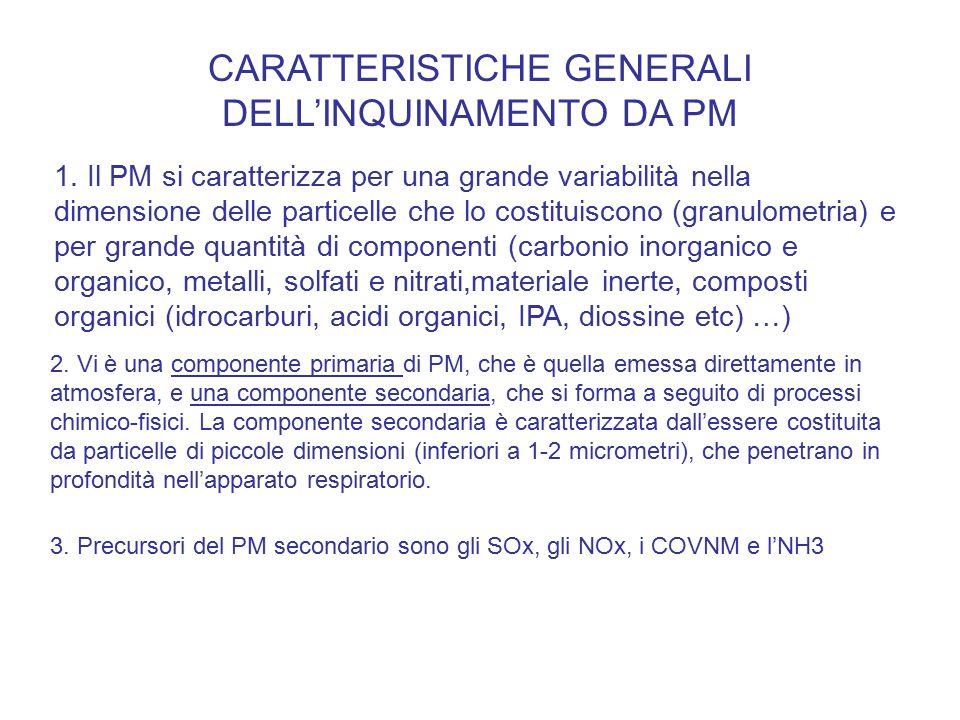 CARATTERISTICHE GENERALI DELL'INQUINAMENTO DA PM