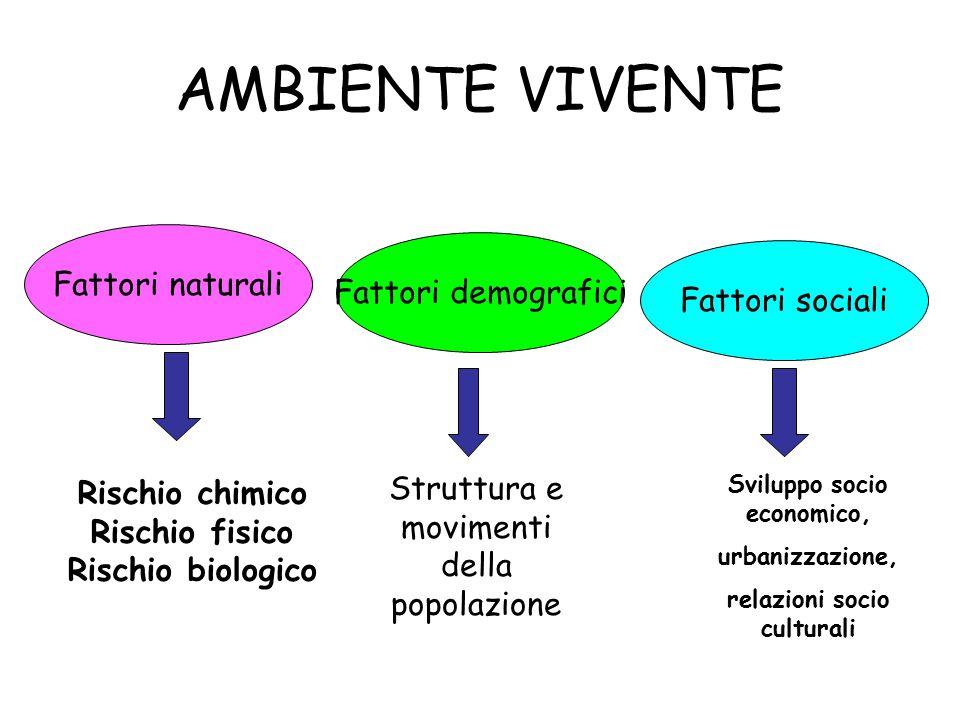 Sviluppo socio economico, relazioni socio culturali
