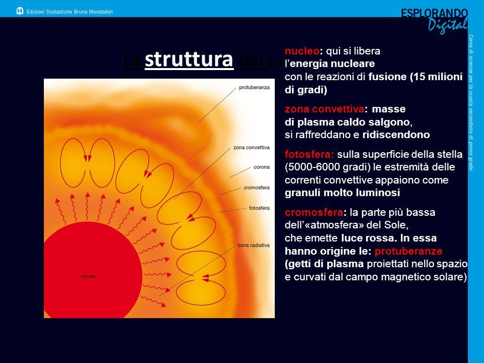La struttura del Sole nucleo: qui si libera l'energia nucleare