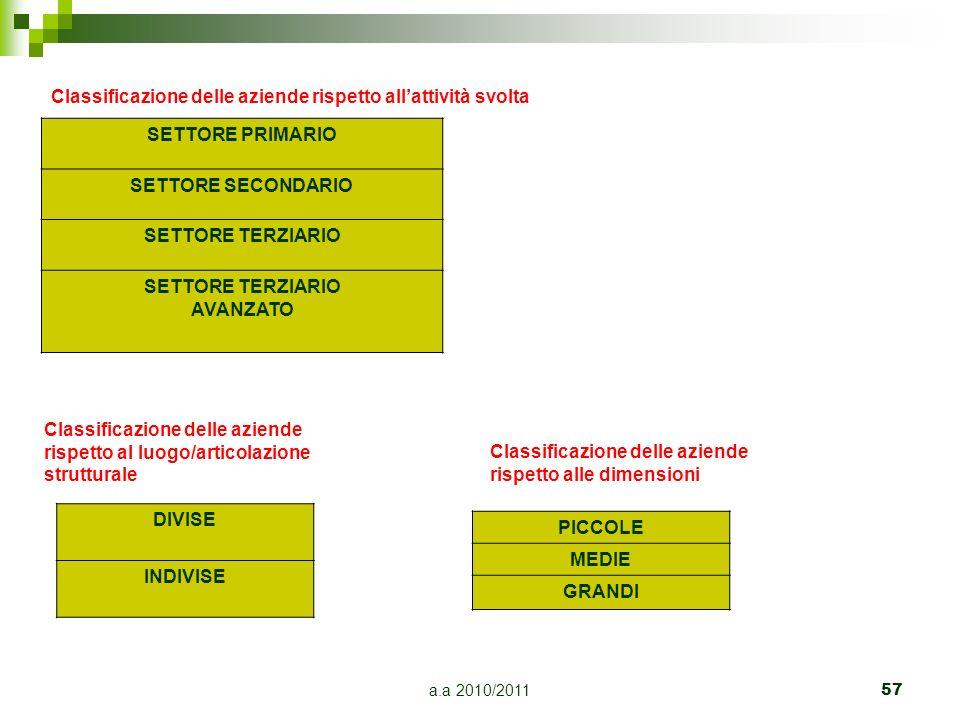 Classificazione delle aziende rispetto all'attività svolta