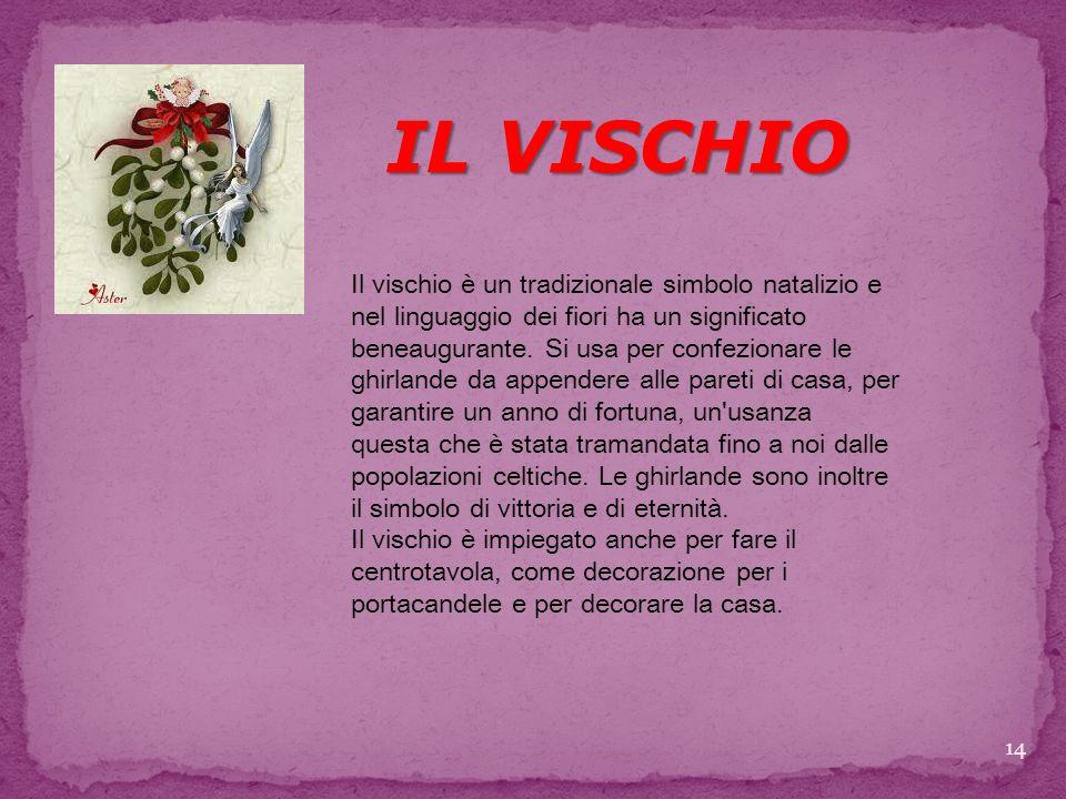 IL VISCHIO