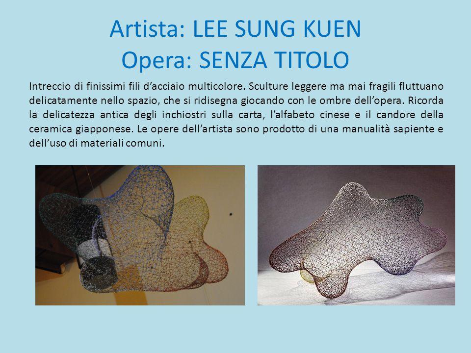 Artista: LEE SUNG KUEN Opera: SENZA TITOLO
