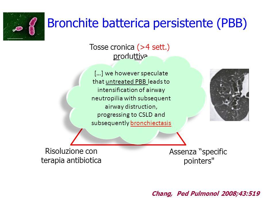Bronchite batterica persistente (PBB)