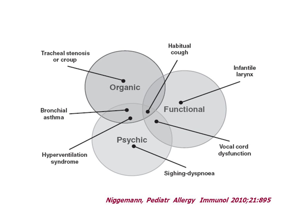 Niggemann, Pediatr Allergy Immunol 2010;21:895