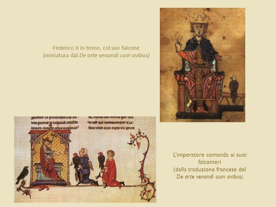 Federico II in trono, col suo falcone