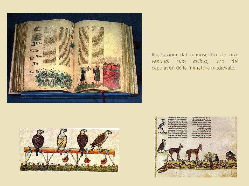 Illustrazioni dal manoscritto De arte venandi cum avibus, uno dei capolavori della miniatura medievale.