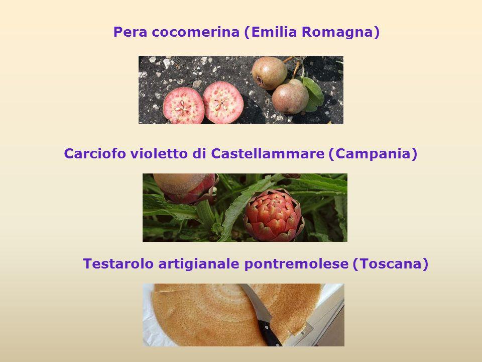 Pera cocomerina (Emilia Romagna)