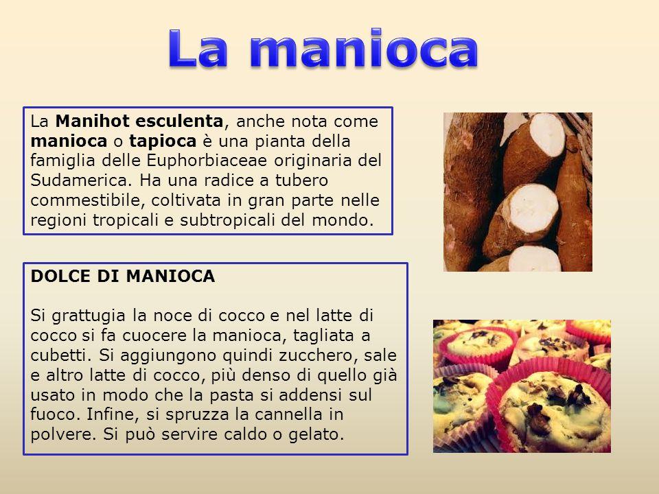 La manioca