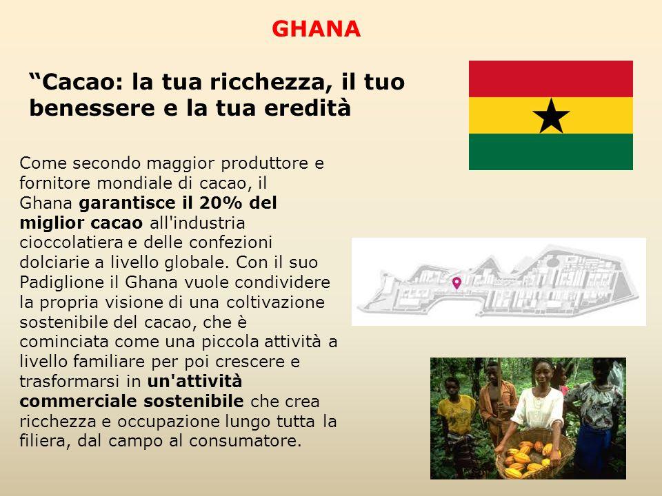 Cacao: la tua ricchezza, il tuo benessere e la tua eredità