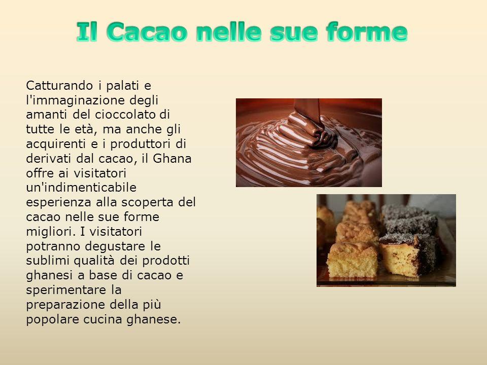Il Cacao nelle sue forme