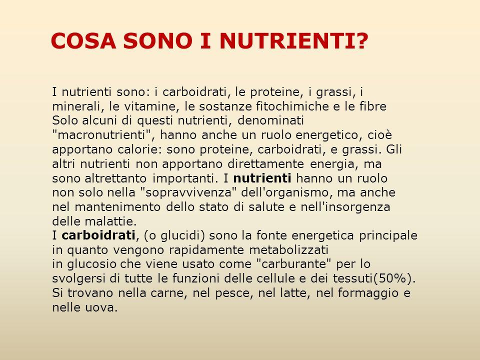 COSA SONO I NUTRIENTI I nutrienti sono: i carboidrati, le proteine, i grassi, i minerali, le vitamine, le sostanze fitochimiche e le fibre.