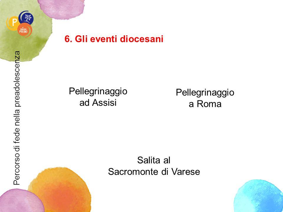 6. Gli eventi diocesani Pellegrinaggio Pellegrinaggio ad Assisi a Roma