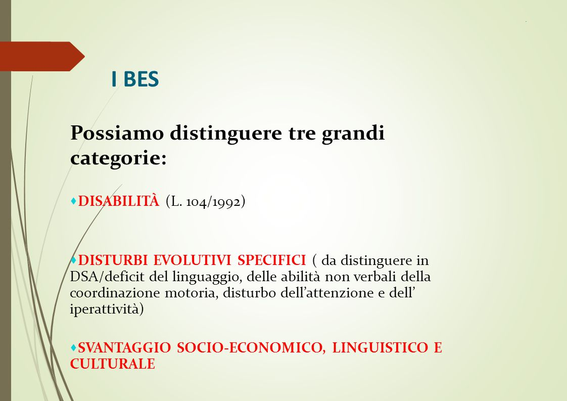 I BES Possiamo distinguere tre grandi categorie: