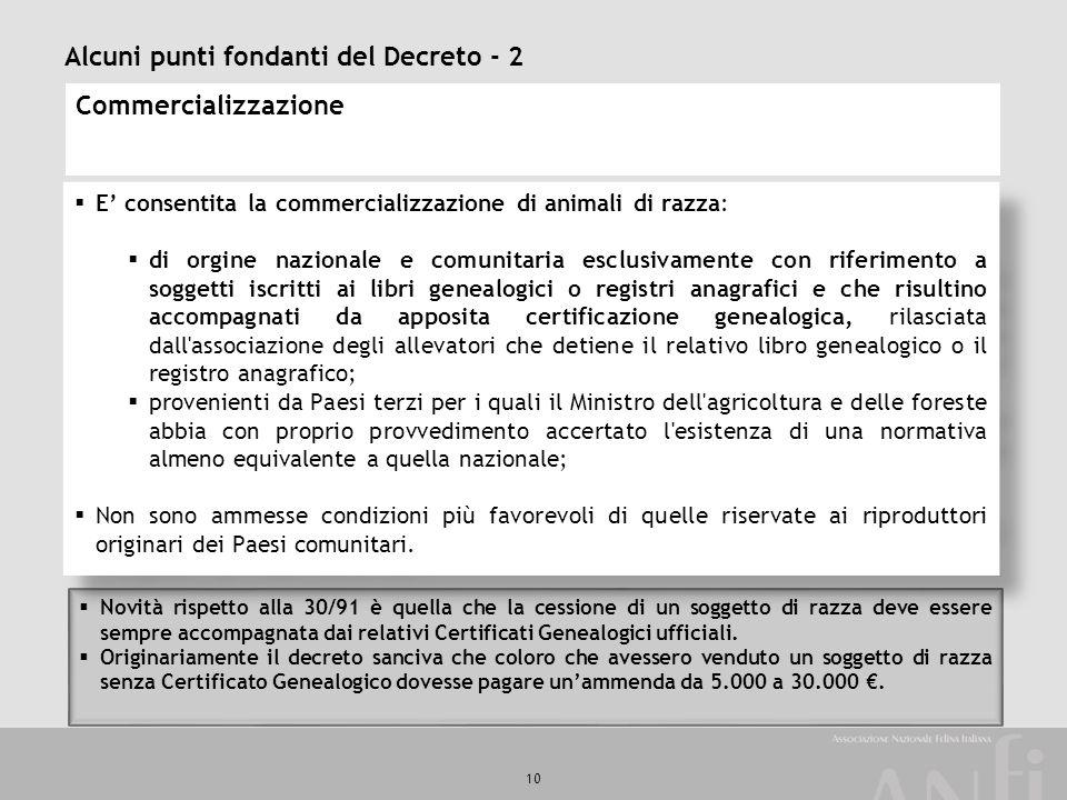 Alcuni punti fondanti del Decreto - 2