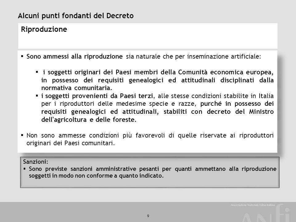 Alcuni punti fondanti del Decreto