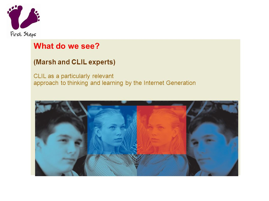What do we see (Marsh and CLIL experts)