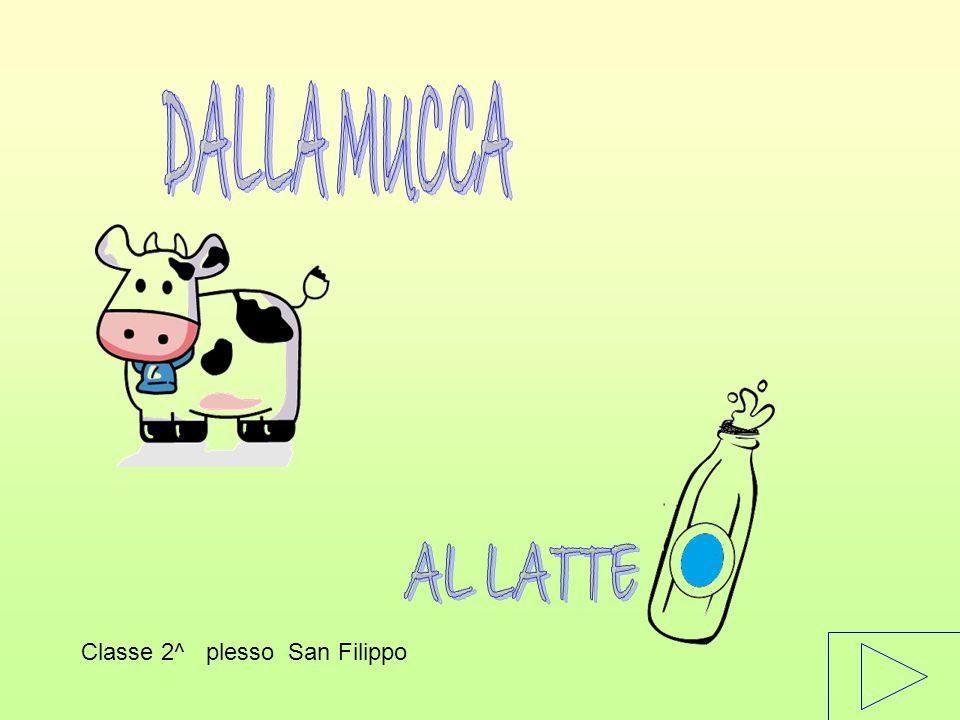 DALLA MUCCA AL LATTE Classe 2^ plesso San Filippo