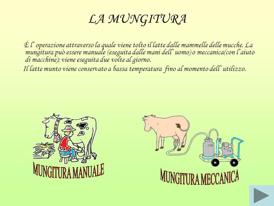 LA MUNGITURA MUNGITURA MANUALE MUNGITURA MECCANICA