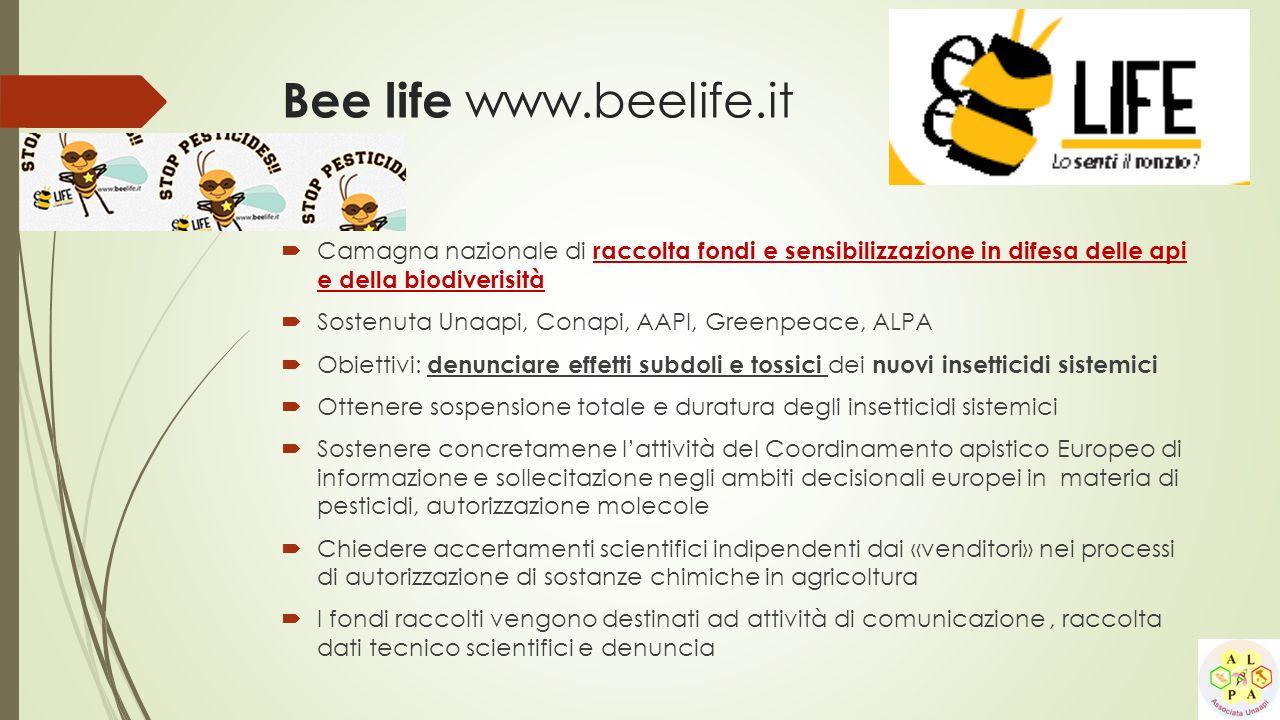 Bee life www.beelife.it Camagna nazionale di raccolta fondi e sensibilizzazione in difesa delle api e della biodiverisità.