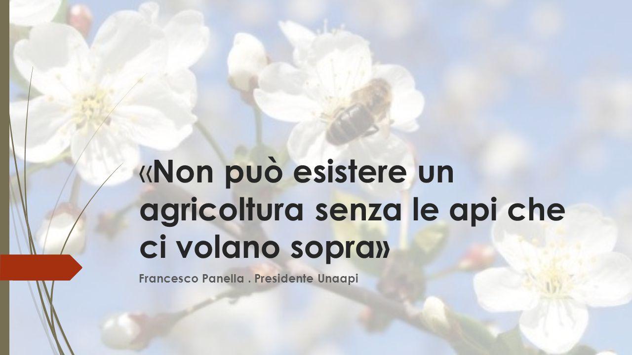 «Non può esistere un agricoltura senza le api che ci volano sopra»