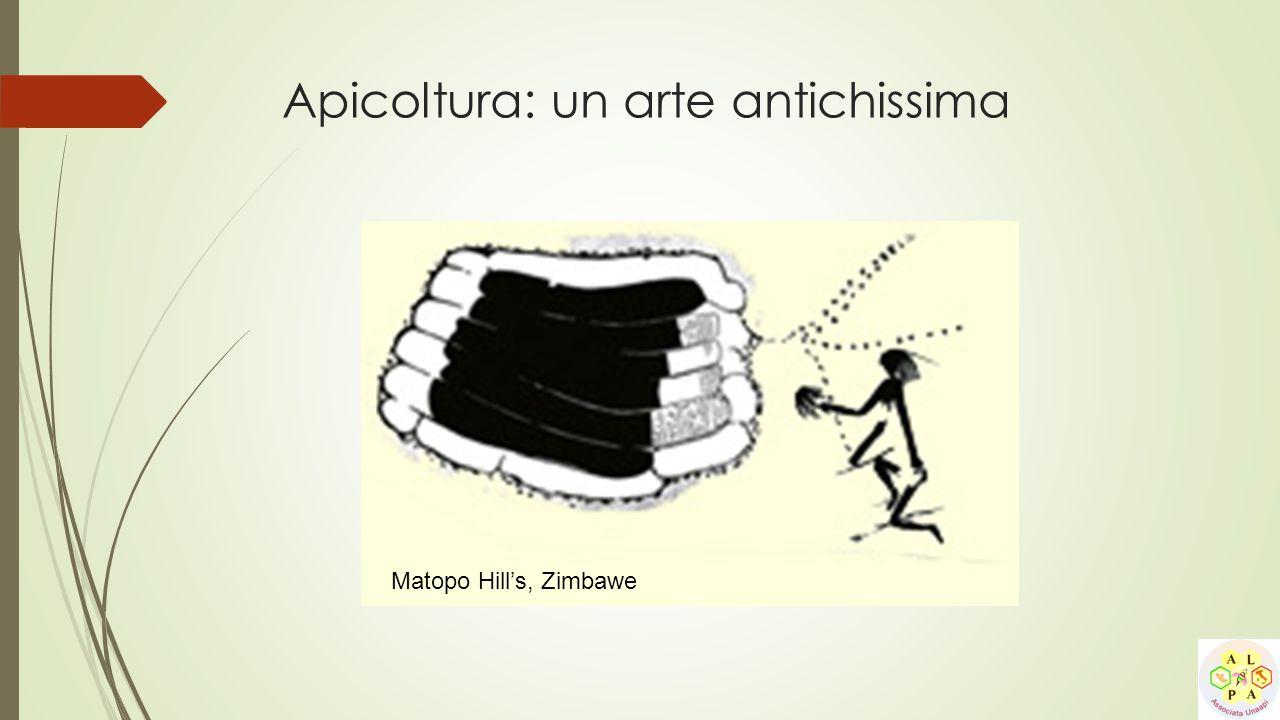 Apicoltura: un arte antichissima