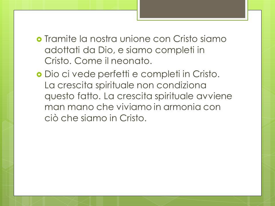 Tramite la nostra unione con Cristo siamo adottati da Dio, e siamo completi in Cristo. Come il neonato.