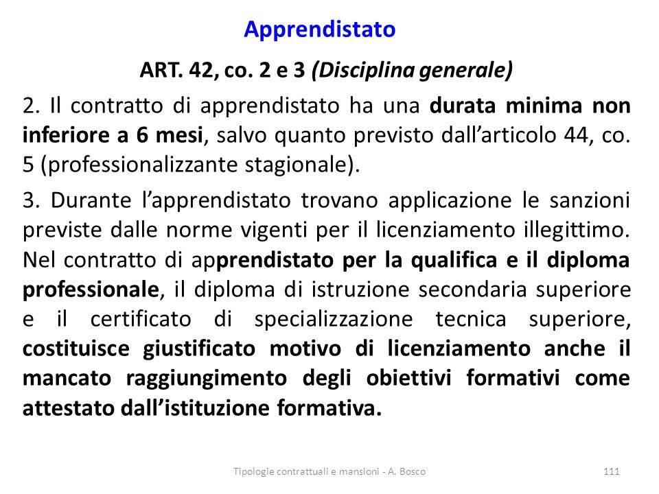 ART. 42, co. 2 e 3 (Disciplina generale)