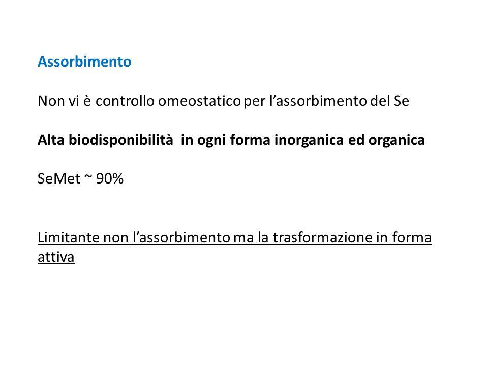Assorbimento Non vi è controllo omeostatico per l'assorbimento del Se. Alta biodisponibilità in ogni forma inorganica ed organica.