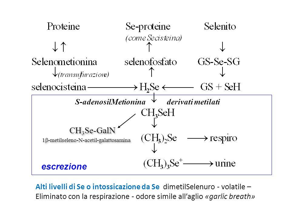 1-metilseleno-N-acetil-galattosamina