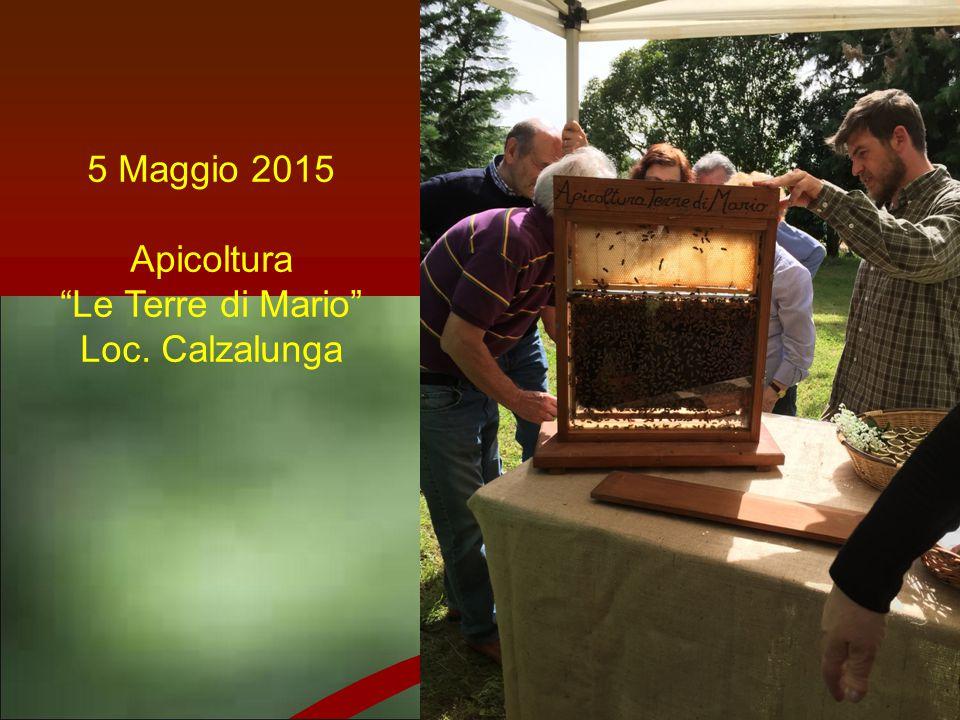 5 Maggio 2015 Apicoltura Le Terre di Mario Loc. Calzalunga