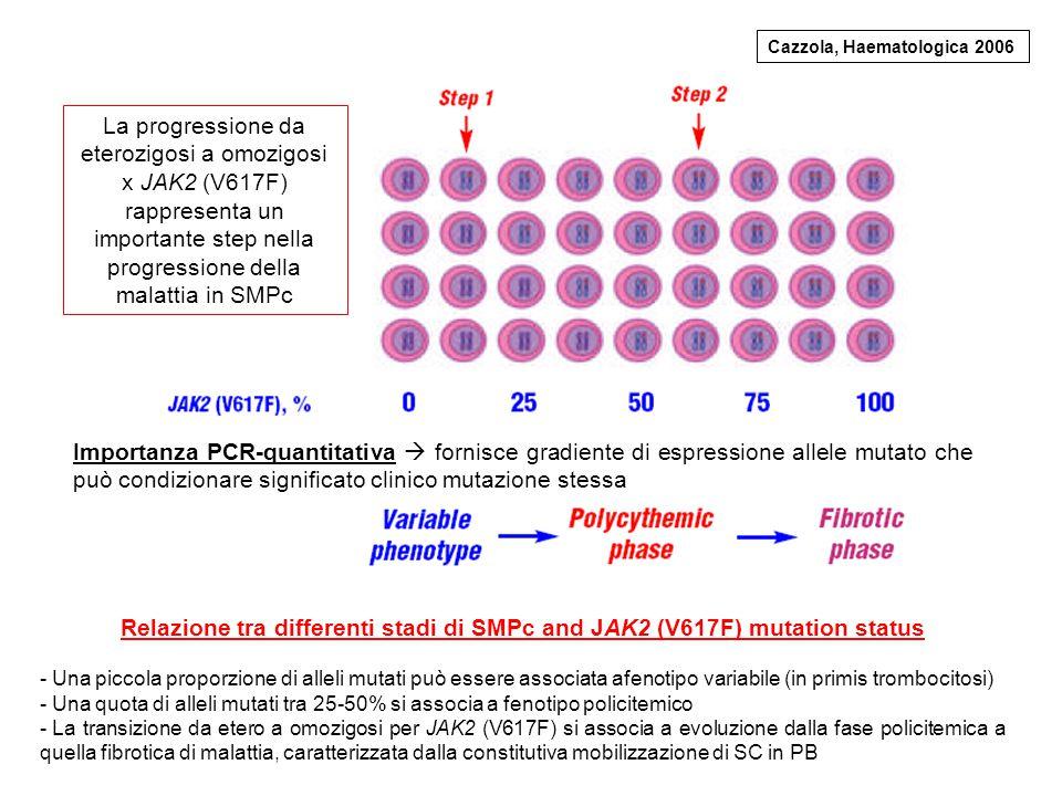 La progressione da eterozigosi a omozigosi x JAK2 (V617F)