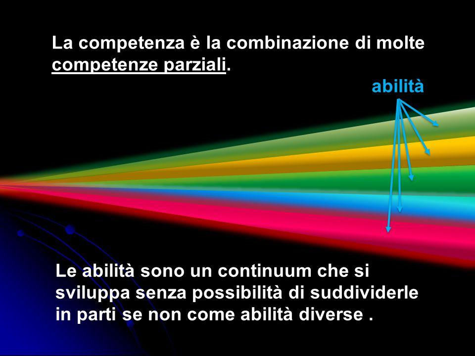 La competenza è la combinazione di molte competenze parziali.