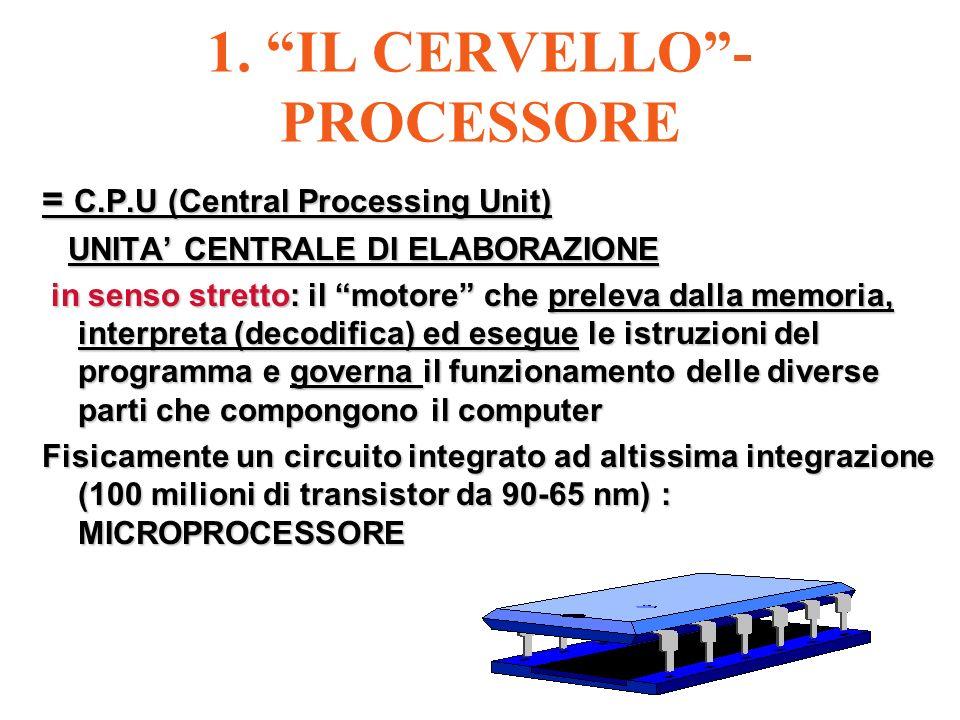 1. IL CERVELLO -PROCESSORE