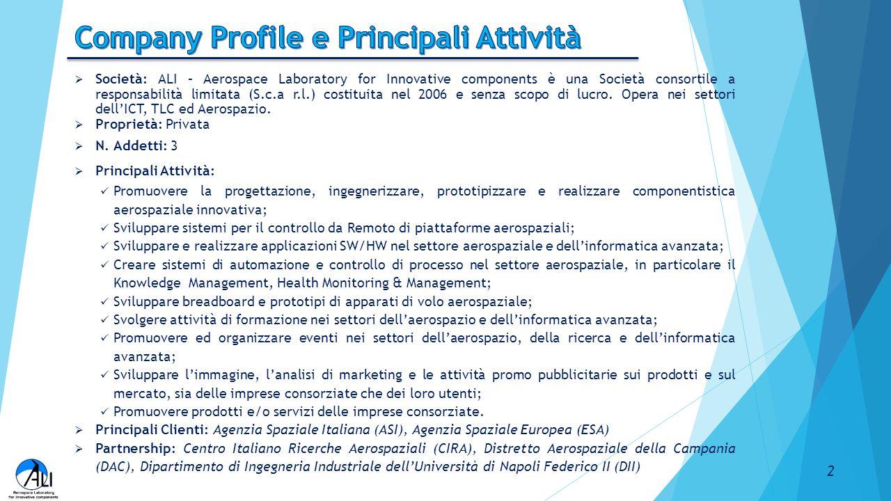 Company Profile e Principali Attività